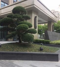 上海越商大厦3.jpg